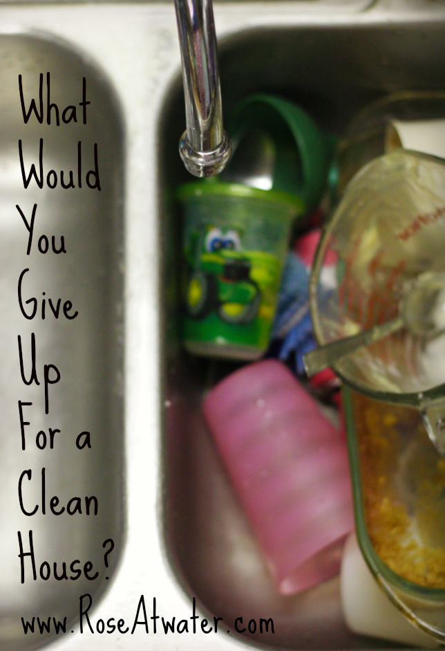 What Would You Give Up for a Clean House?