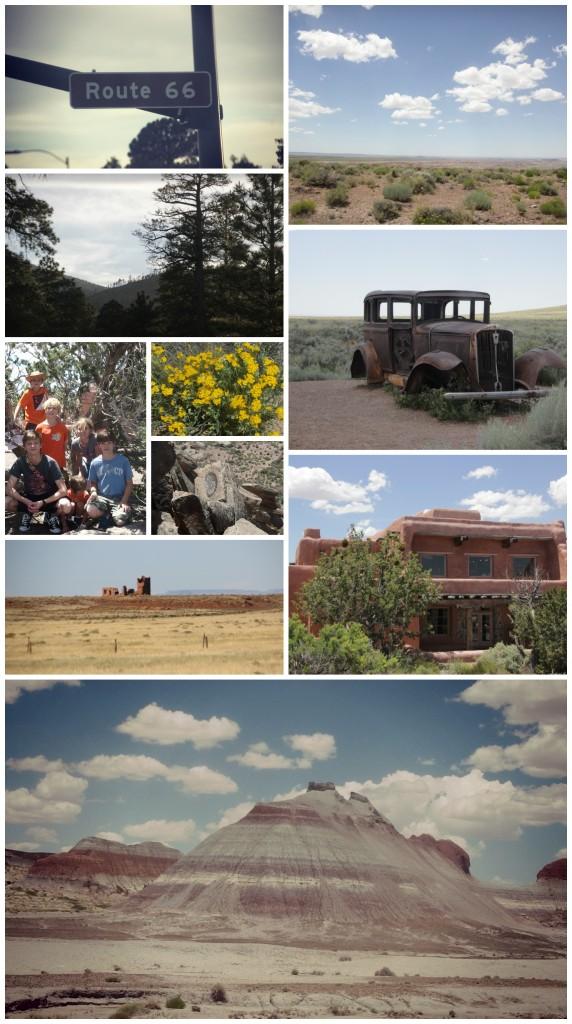 Arizona June 1