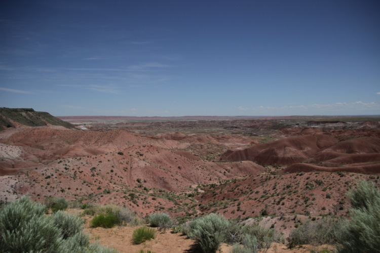 Road Trip 2015: Day 4 {Petrified Forest, Painted Desert, Meteor Crater, Salsa Brava}
