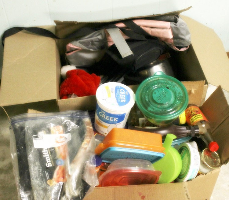500 Things Decluttering Challenge: Day 7
