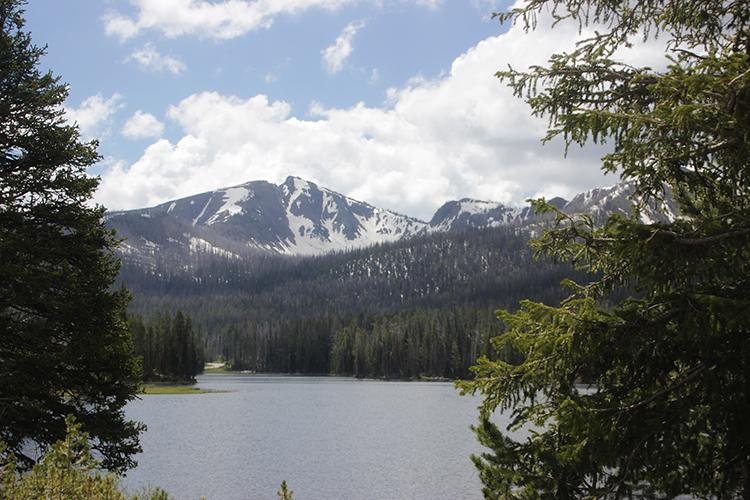 Beautiful Yellowstone Mountain and Lake