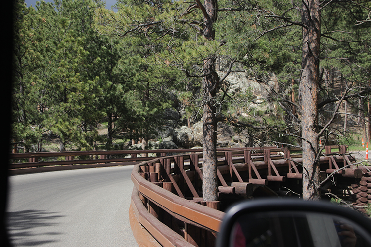 Curvy Bridge in Custer State Park South Dakota