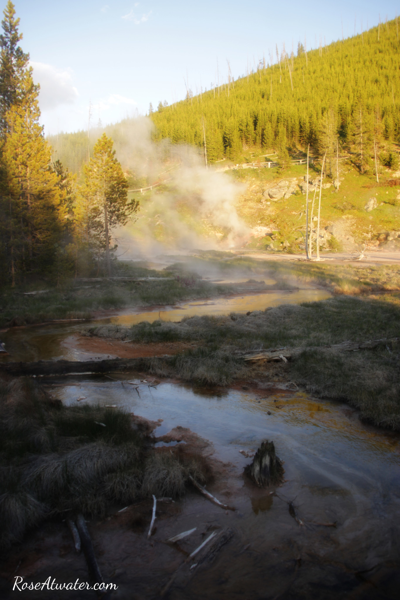Road Trip 2015: Day 9 {Yellowstone, Old Faithful, Paint Pots & Wildlife!}