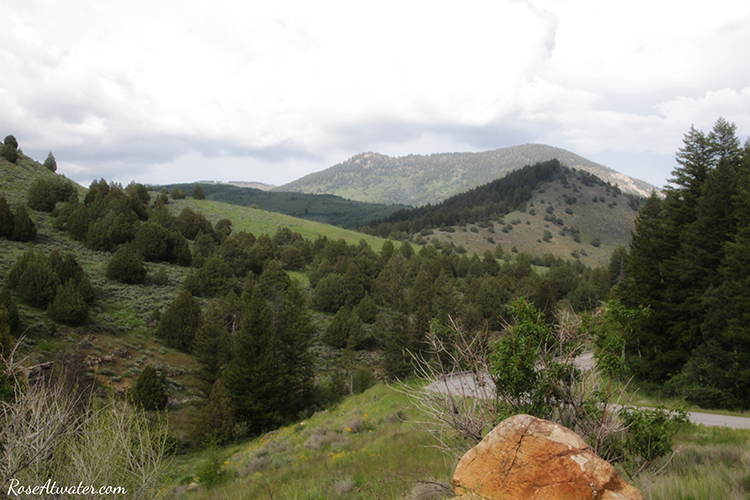 Scenic Hwy 89 Utah