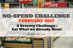 No-Spend Grocery Challenge {Days 2-5 | February 2017}