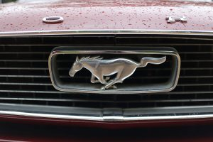 A Night Out in the Mustang + Day 3 No Spend Challenge
